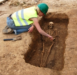 Skeletal excavation